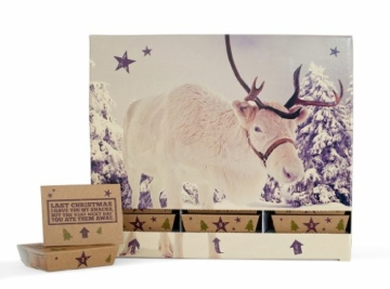 BiteBox Adventskalender Rentier, 1er Pack -